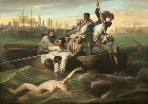 Copley, John Singleton: Watson and the Shark. Fine Art Print/Poster. Sizes: A4/A3/A2/A1 (004087)